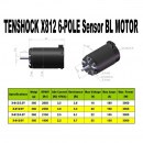 Sensored brushless motor TS X812 6-Pol Car Motor